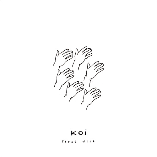 Koi - First Week